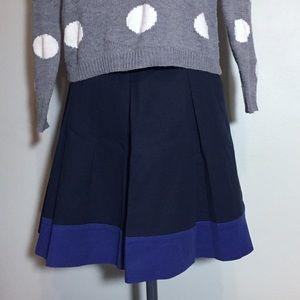 Banana Republic Navy & Purple A-Line Pleated Skirt